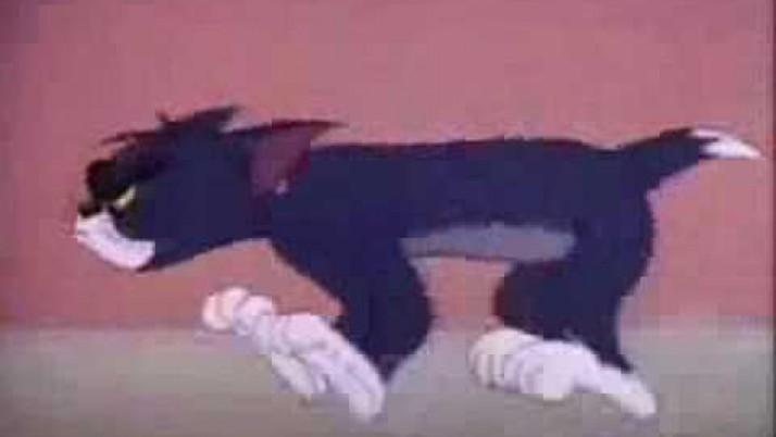 El gato Valseador